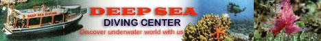 Logo Deep Sea Diving Turkey